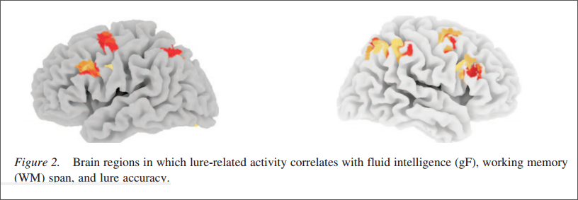 interference control brain regions